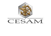 cesam_small